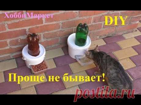DIY Поилка и кормушка для кошек и собак. Проще простого! ХоббиМаркет