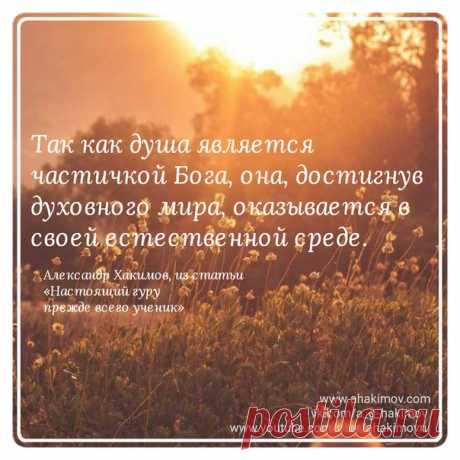 #Хакимов www.ahakimov.com