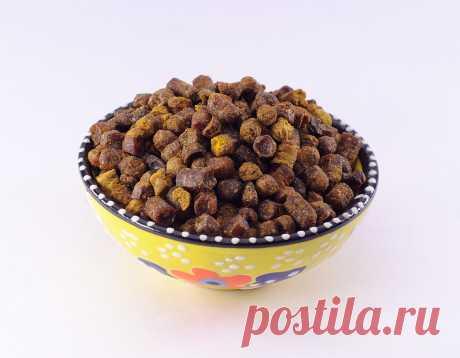 Перга — супер полезный для здоровья продукт пчеловодства! Как правильно употреблять   Всегда в форме!
