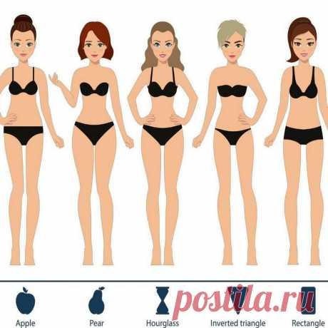 Питание по типу фигуры Телосложение каждого человека — вопрос индивидуальный. Но, все-таки, основываясь на определенных признаках, специалисты объединили все разнообразие фигур представительниц прекрасного пола в четыре главных типа. Для каждого из них подходит специальная диета.