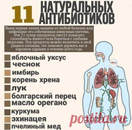 Продукты, которые помогают нашему организму