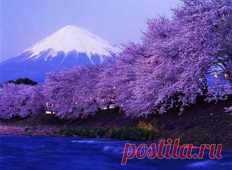 Япония. Фудзияма теперь платная