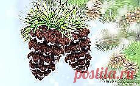 Анна Стрелецкая: Новый год и Рождество (идеи и красота) | Постила.ru
