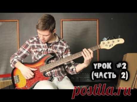 show MONICA Bass - Настройка и выбор бас-гитары (Part 2)