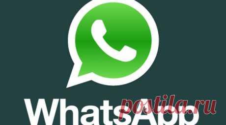 В WhatsApp добавили ЭТУ новую функцию! Ведь мы её так долго ждали! — В Курсе Жизни