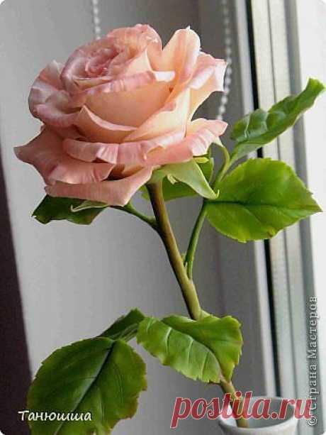 Цветы которые не вянут.Розы из холодного фарфора, как сделать молды и другие полезности для лепки.