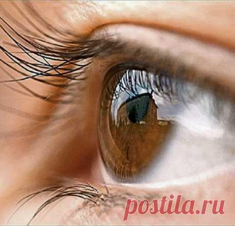 Народные средства для лечения зрения