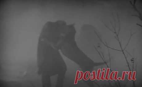 14 собачек - собачек Баскервилей. Кто из них страшнее? : kino_sssr — ЖЖ