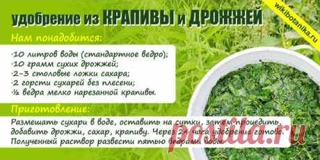 Удобрение из крапивы для подкормки растений | WikiBotanika.ru