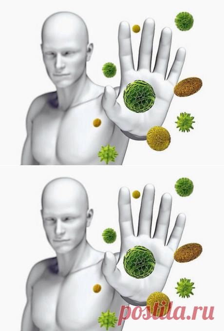 El hambre de corta duración perezapuskaet el sistema inmunitario restablece el organismo