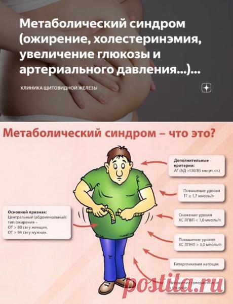 Метаболический синдром (ожирение, холестеринэмия, увеличение глюкозы и артериального давления...) связан с Щитовидной железой | Клиника щитовидной железы | Яндекс Дзен
