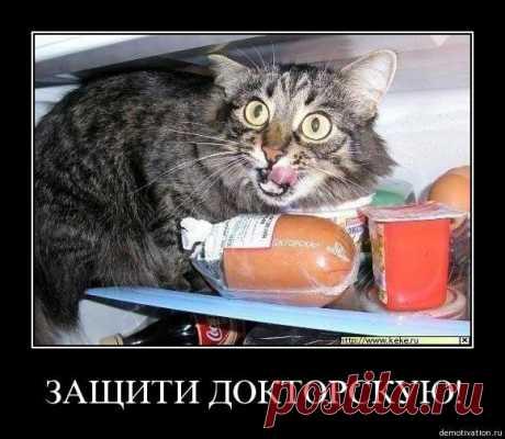 Смешные картинки - 36