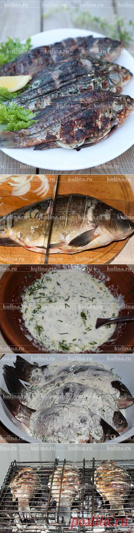 Fish on a brazier – the recipe of preparation with a photo from Kulina.Ru