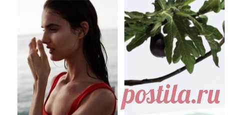Как нельзя наносить аромат и какой ингредиент считается самым женственным: 8 вопросов парфюмерному эксперту | Тренды на www.elle.ru