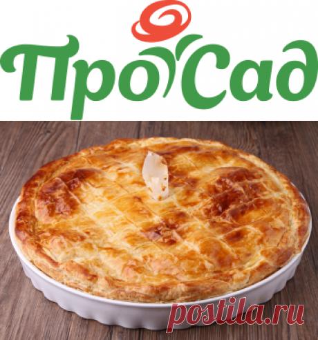 Рецепты вкусного курника - prosad.ru всё про сад и огород
