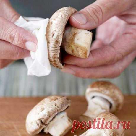 Ошибки при приготовлении грибов, которые делают их вкус резиновым