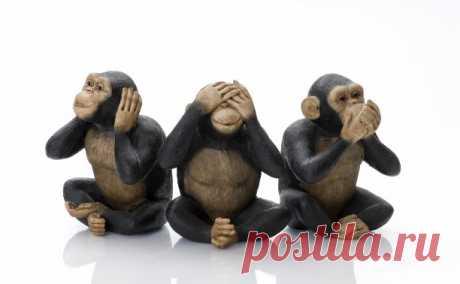 Четвертая обезьяна...