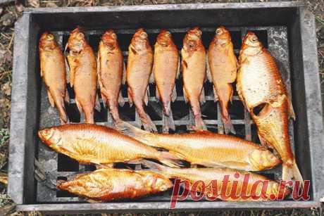 Как коптить рыбу: Какую рыбу коптить, как приготовить копченую рыбу