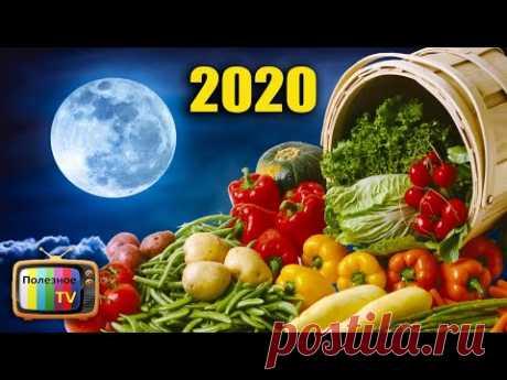 САМЫЙ ТОЧНЫЙ ПОСЕВНОЙ КАЛЕНДАРЬ НА 2020 ГОД