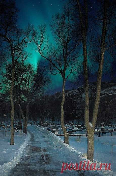 NORWAY - ¡The Northern Lights   Nature!