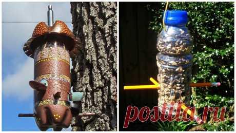 🕊 Кормушка для птиц из пластиковой бутылки: идеи и советы по изготовлению.