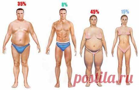 Врачи потеряли дар речи: достаточно просто cварить эти 2 ингредиента и лишний вес перестанет быть проблемой! — В РИТМІ ЖИТТЯ