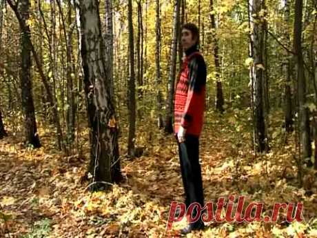 УПР. №7-ПОВОРОТ  ГОЛОВЫ--Дыхательная гимнастика Стрельниковой от всех болезней | Bodymaster О спорте и фитнесе | Яндекс Дзен