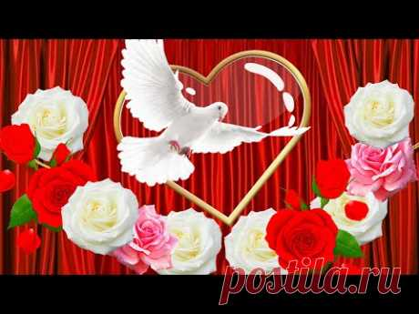 💖Я тебя люблю! С днем святого Валентина! 💖 День влюбленных!  💖 Красивое поздравление с днем влюбленных 14 февраля. Слова любимому Я тебя люблю! видео открытки. 💖 Поздравление с днем святого валентина. В День святого Валентина принято признаваться в любви. А я желаю не просто любить и быть любимым человеком, желаю чтобы любовь была искренней, крепкой и прочной. Чтобы сердце от радости и счастья билось в такт с сердцем любимой человека. Чтобы любовь вдохновляла на добрые дела и красивые поступ