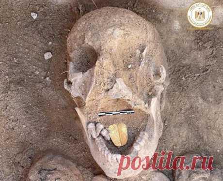 В египетском храме обнаружены мумии с золотыми языками   Наука и технологии
