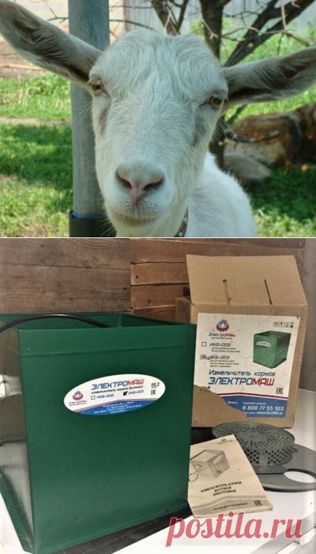 Какое оборудование используем для кормления коз | Своих не едим. | Яндекс Дзен