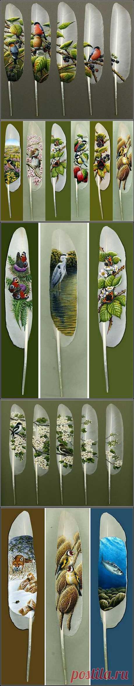 Вместо холста - лебединые перья. Необычная живопись Яна Дэйви (Ian Davie)