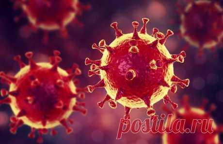 Названо смертельно опасное лекарство при лечении коронавируса Специалисты озвучили смертельно опасное лекарство при лечении коронавируса. Об этом сообщает ИА Evo-rus.com. Хлорохин врачи назвали смертельно опасным для лечения опасного вируса нового типа, данный препарат может вызвать серьезные проблемы с дыханием у заражённых вирусом пациентов. Врачи сообщили, что при заражении коронавирусом недопустимо принимать хлорохин – лекарство для лечения и профилактики малярии. Об этом сообщается