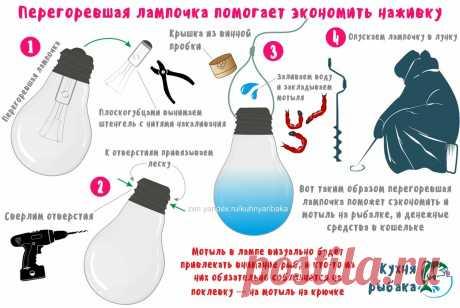 Мотыль в лампочке для экономной рыбалки | Кухня рыбака | Яндекс Дзен