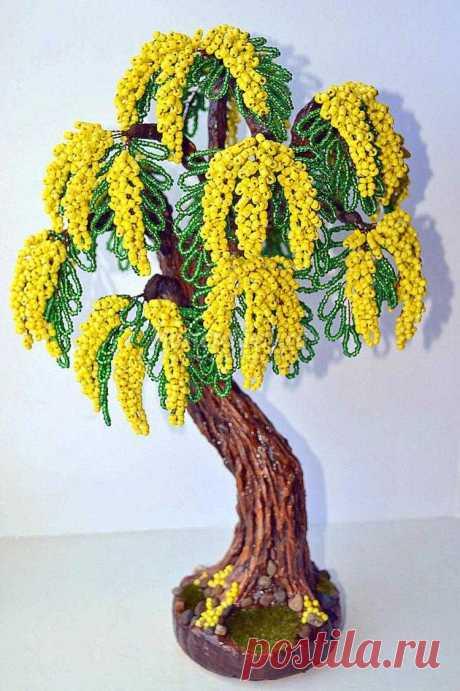 La mimosa grande de los abalorios. La Clase maestra con poshagovymi la foto