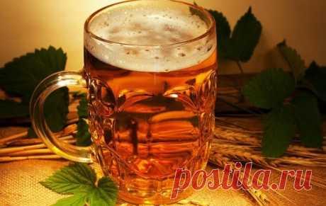 Употребление от пяти до десяти доз спиртных напитков в неделю может сократить жизнь примерно на полгода, а более 18 — отнять до пяти лет, показало новое исследование. Это ставит под сомнение распространенную идею о том, что пить «в меру» полезно.