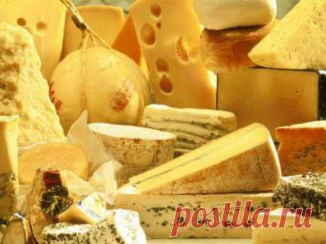 Интересное о сыре. Условия хранения твердого сыра — Полезные советы