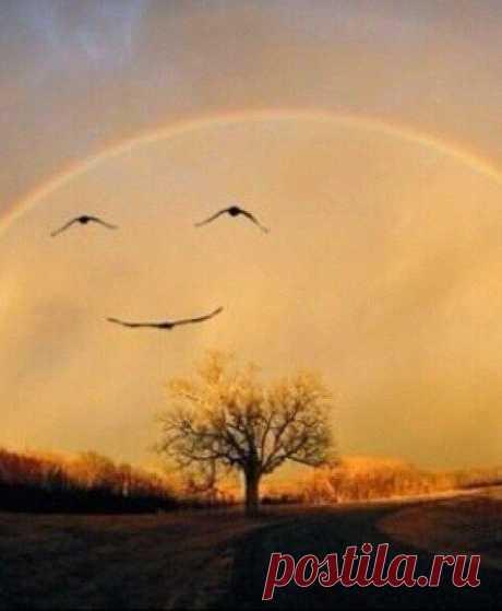 Cada nuevo día encuentren con la sonrisa y él responderá con la reciprocidad