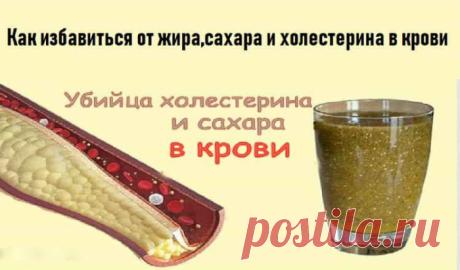 Как избавиться от жира,сахара и холестерина в крови
