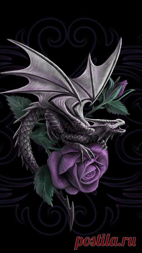 Dragon Beauty wallpaper by K_a_r_m_a_ - f0 - Free on ZEDGE™ Download Dragon Beauty wallpaper by K_a_r_m_a_ - f0 - Free on ZEDGE™ now. Browse millions of popular beauty Wallpapers and Ringtones on Zedge and personalize your phone to suit you. Browse our content now and free your phone