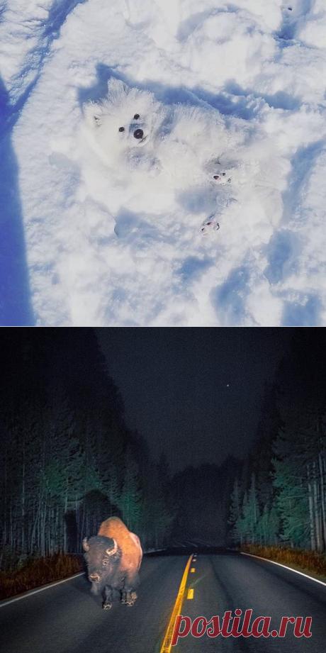 EARTH FOCUS (@earthfocus) • Фото и видео в Instagram