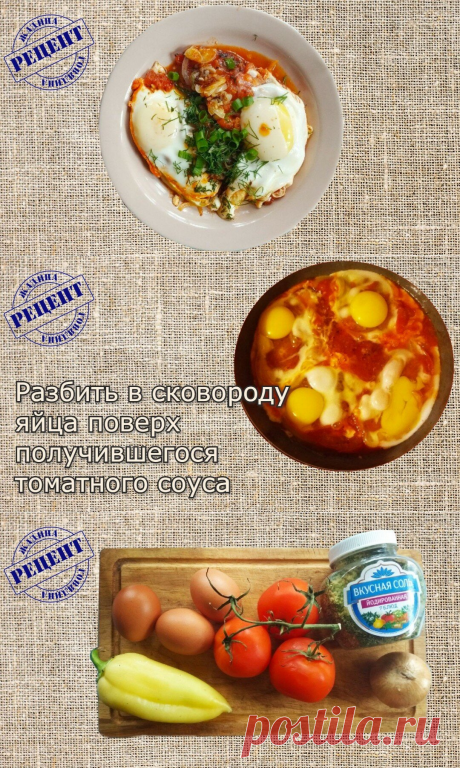 "Моя прабабушка готовила ""Шакшуку"" на завтрак, обед и ужин, хотя и не знала такого названия   Кулинарная книга жадины   Яндекс Дзен"
