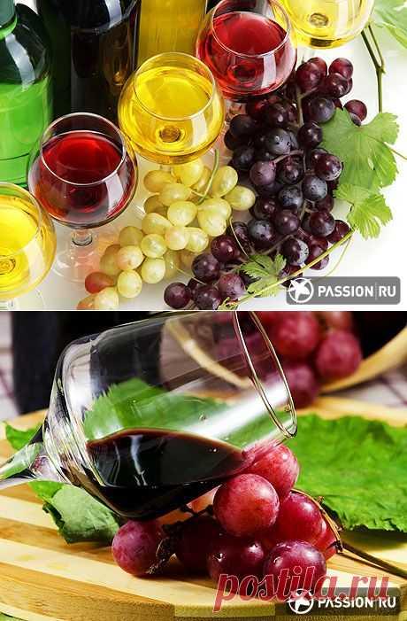Как сделать домашнее вино: советы и рецепты   passion.ru