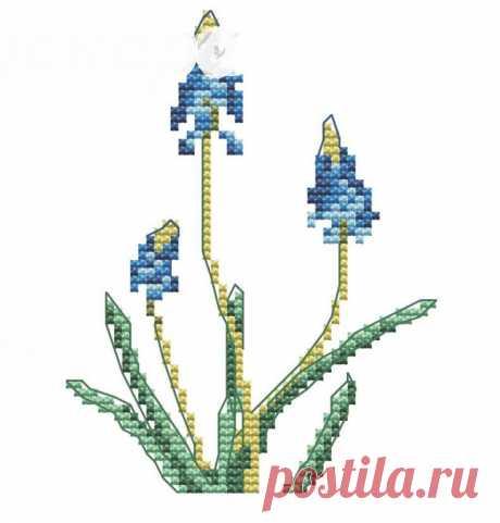 Бесплатные Авторские Схемы – 1 034 фотографии | ВКонтакте
