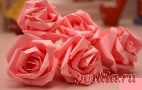 Нежные розы из бумаги