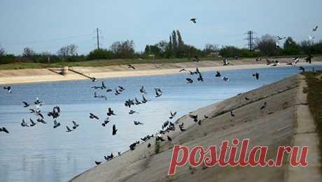 Вода для всех: аграриям РК разрешили орошать земли из Северо-Крымского канала.