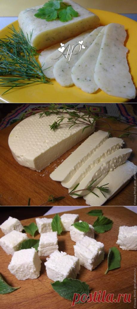 Диета Дюкана. Сыр, творог, сметана, кефир, йогурт / Pinme
