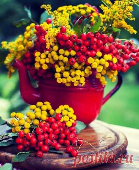И осень может быть прекрасной,  Если уметь ей наслаждаться...