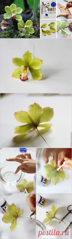 Orchid molding tsimbidium from polymeric clay - the Fair of Masters - handwork, handmade