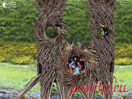 Гнезда для людей