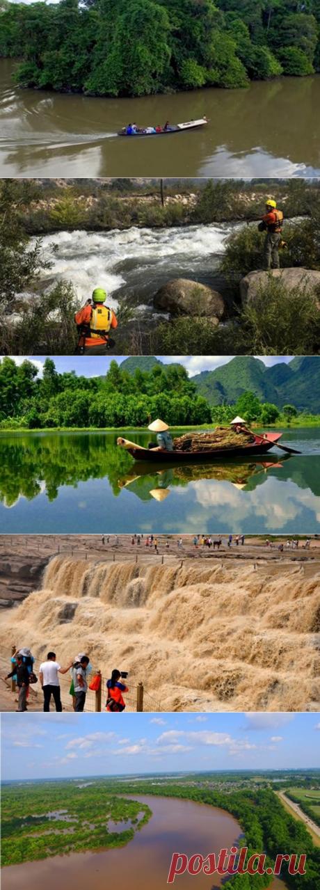 Крокодилы и не только: самые опасные реки в мире / Туристический спутник